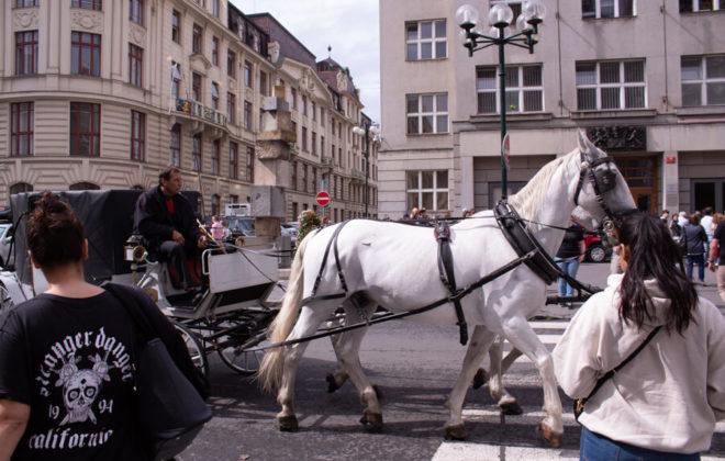 2018_09_Prag_WT_IMG_1397