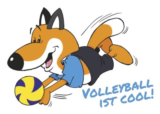 Miniturnier-Serie Volleyball-Region Wiesbaden 2018